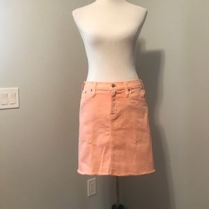 Pink Jean J. Crew Mercantile Skirt NWT
